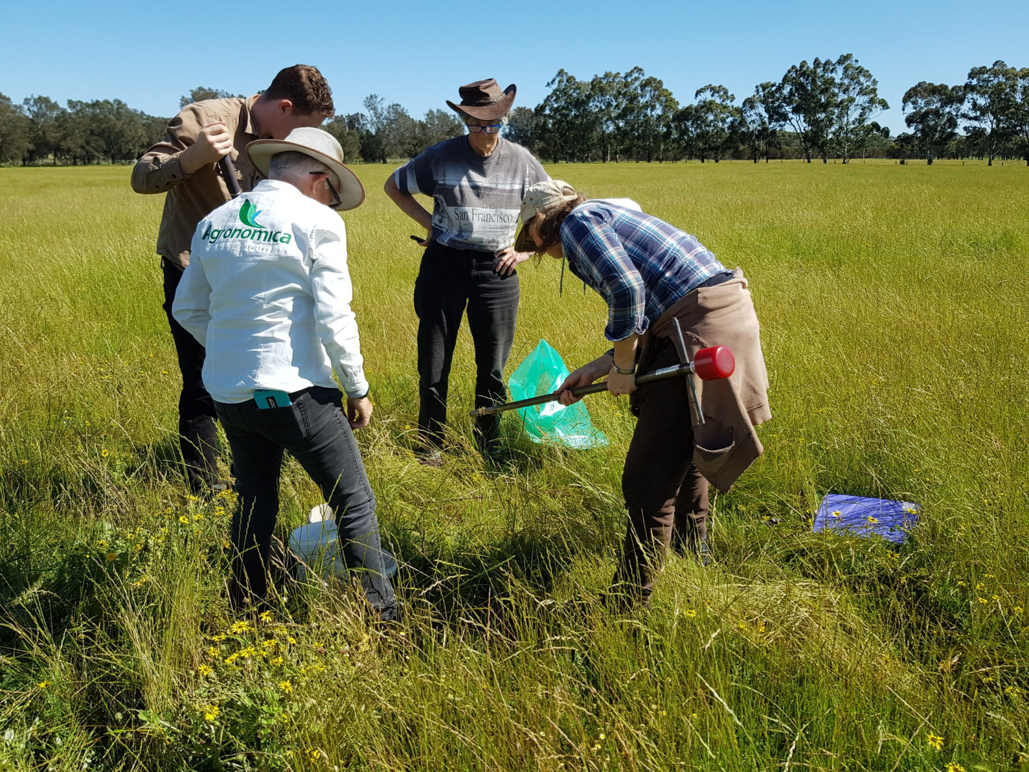 Peel Harvey Catchment Council Regenerative Farmer Field Trials